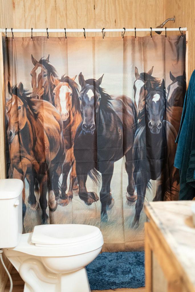 the-horse-guru-michael-gascon-gascon-horsemanship-facility-35_orig