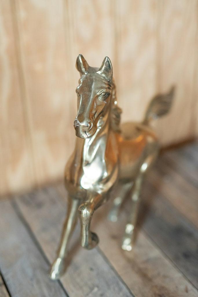 the-horse-guru-michael-gascon-gascon-horsemanship-facility-55_orig