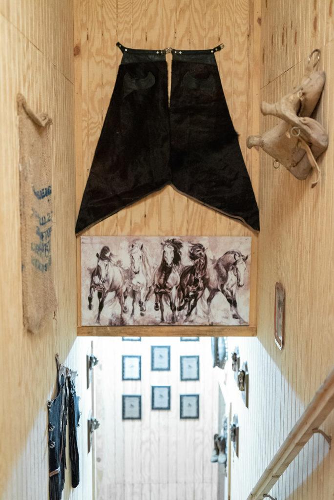 the-horse-guru-michael-gascon-gascon-horsemanship-facility-57_orig