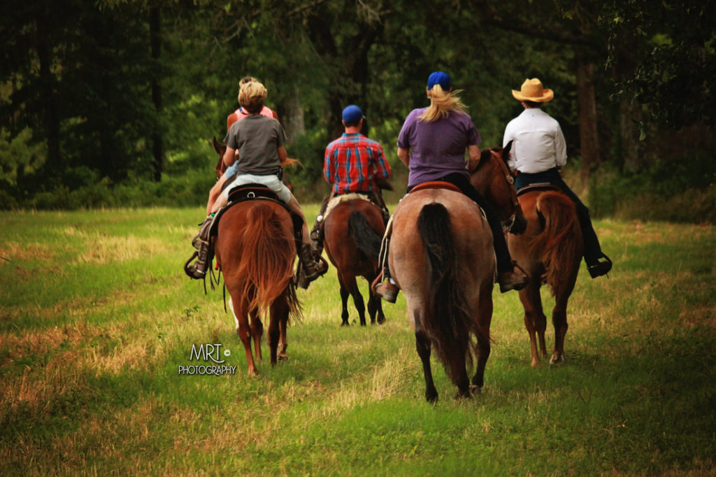 the-horse-guru-michael-gascon-gascon-horsemanship-retreat-5_orig
